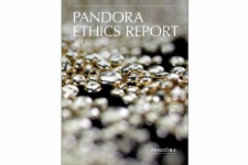 Pandora's Ethics Report 2013