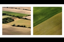 The Danish Agriculture & Food Council,  identity pictures